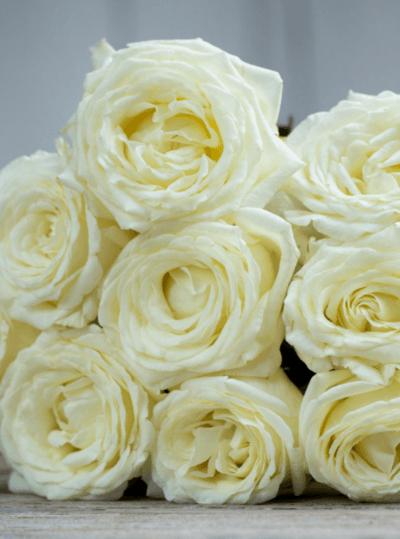 свадебный букет невесты из пионов и роз