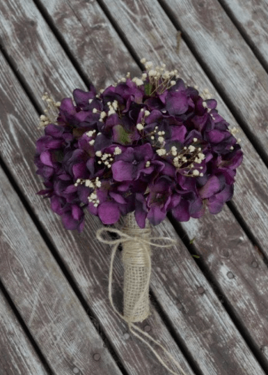 сорт фиалки свадебный букет