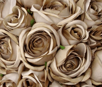 бежевый свадебный букет